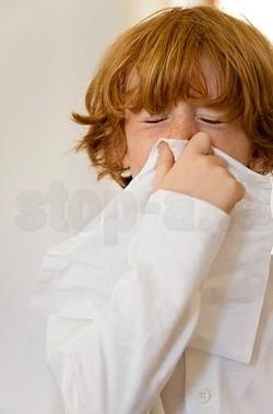 Аллергия на полынь у ребенка