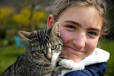 Аллергия на кошачью шерсть фото