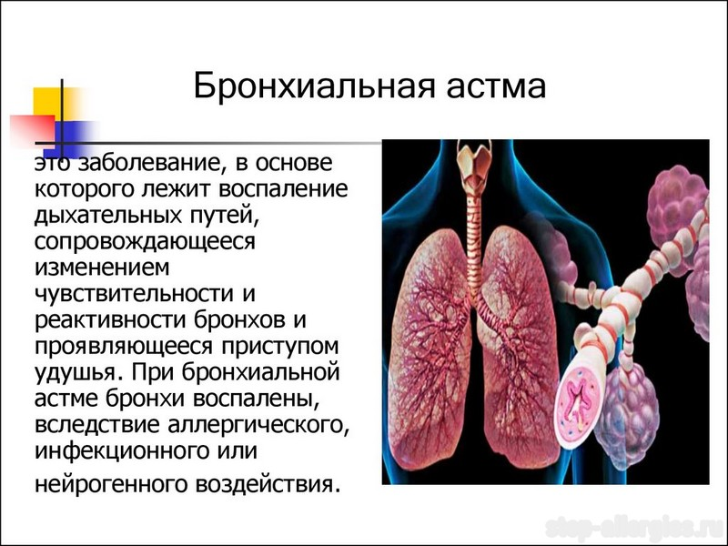 Respiratory System Quizzes Online Trivia Questions