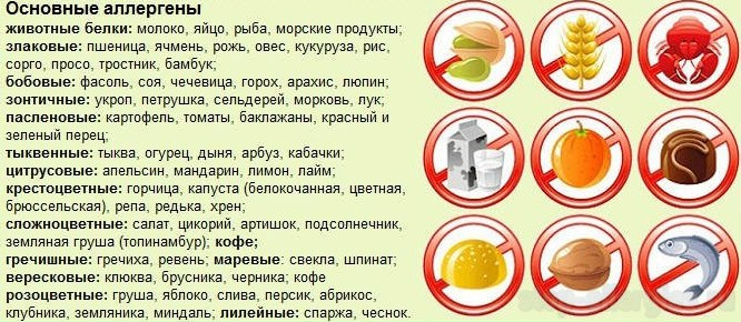 Аллергия на цикорий симптомы